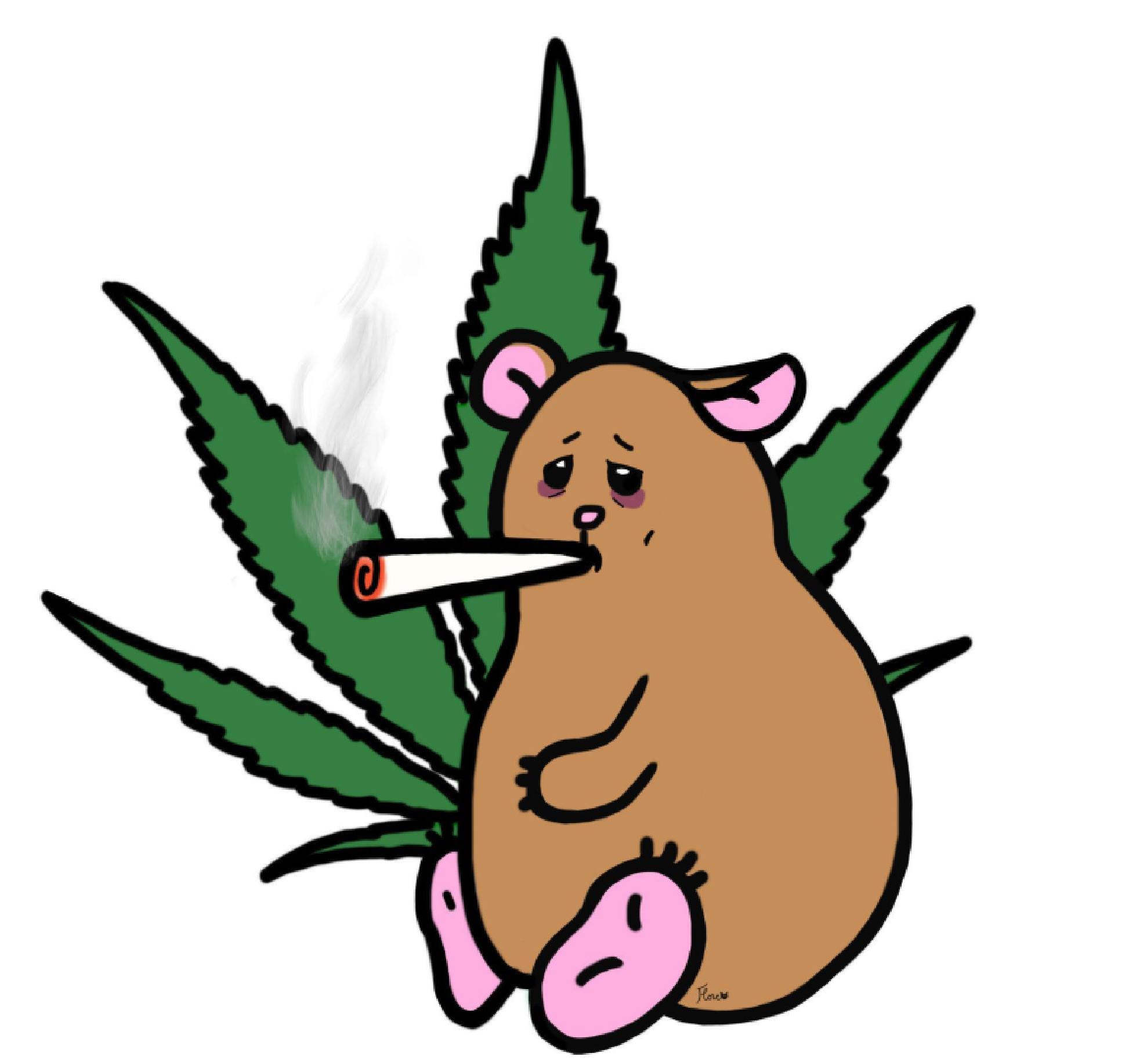 cannabismedicinalflore.jpg