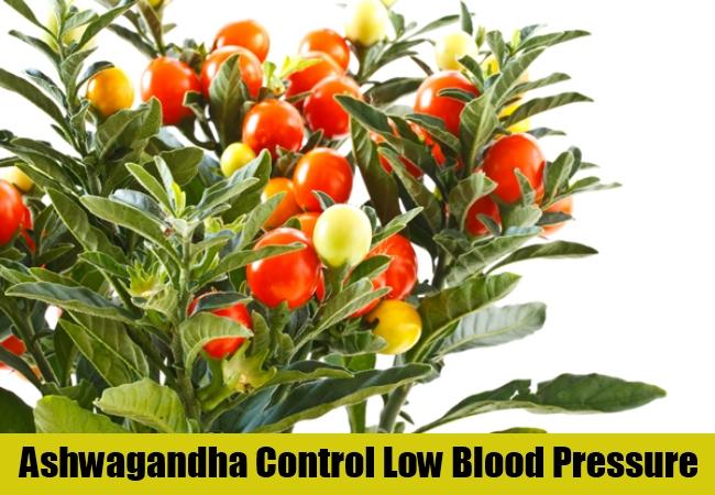 Ashwagandha Control Low Blood Pressure