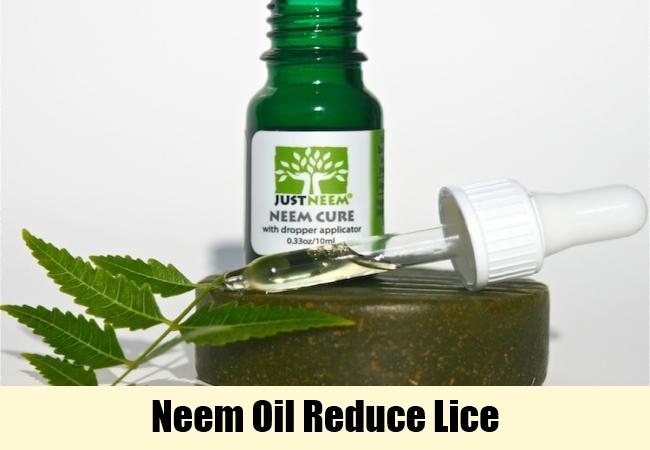 Neem Oil Reduce Lice