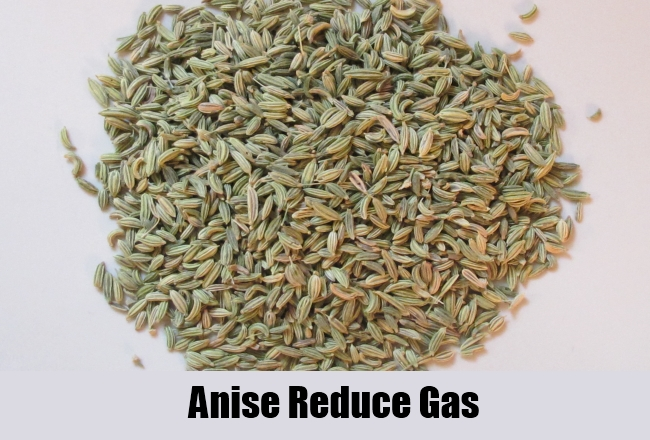 Anise Reduce Gas