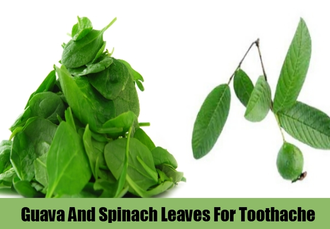 Guava And Spinach Leaves For Toothache