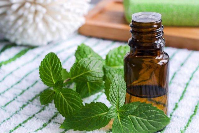 Try Applying Peppermint Oil