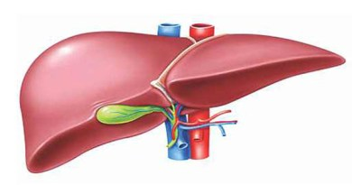 Bengal Traditional Practices on Liver Disorder