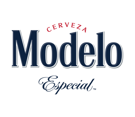 MODELO ESPECIAL