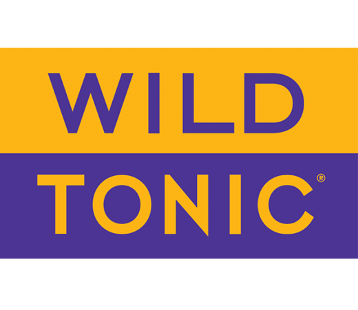WILD TONIC BLACKBERRY MINT HARD JUN KOMBUCHA