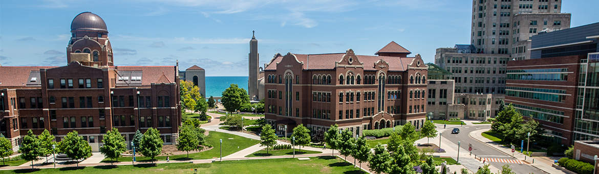 Loyola University Of Chicago  The Princeton Review