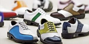Est-ce que votre Golf Shoe Fit?