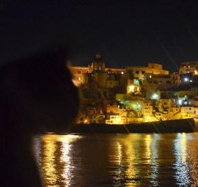 de nuit, un chat s'incruste sur la photo