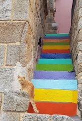 Escalier en couleurs et chat roux (Rhodes)