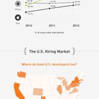 Stackoverflow Survey - 2012