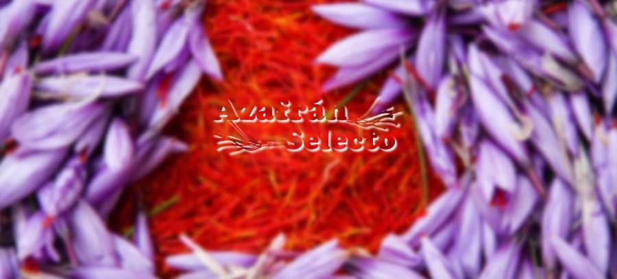 Azafran España | Spanish Saffron | Safran de L'Espagne
