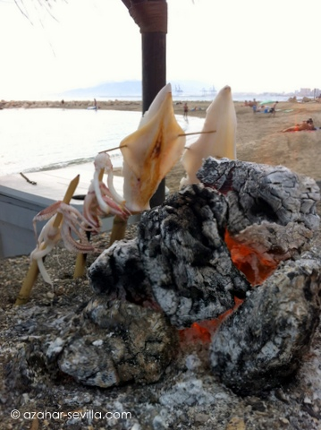 maricuchi squid on bbq