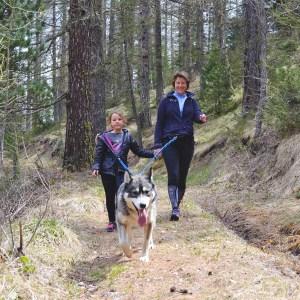cani-randonnée en famille