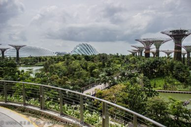 Gardens by the bay.