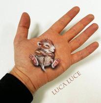 الخداع البصري، فن الأبعاد الثلاثية في راحة اليد، لوكا لوس.bmp-008