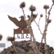 Բացահայտվել են Կոշ համայնքի ղեկավարի ապօրինությունները (ՏԵՍԱՆՅՈւԹ)