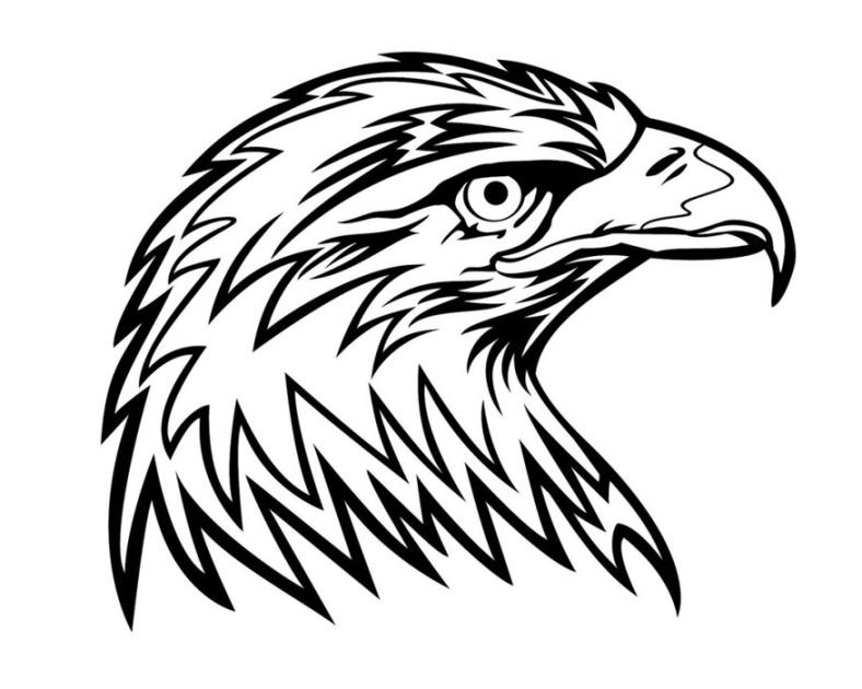 Ausmalbilder Adler ausmalbilder