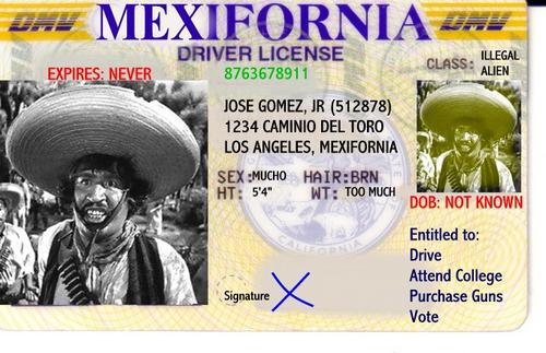 Mexiforniadriverslicense