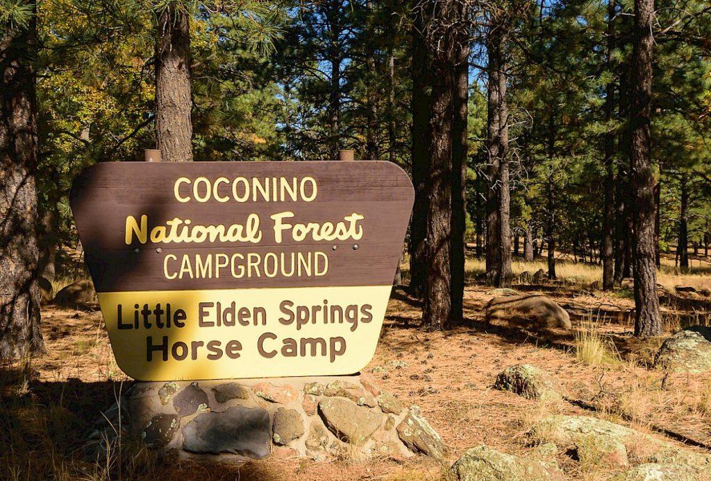 AZ Camp Guide   Little Elden Springs Horse Camp