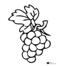Dibujo de uvas para colorear - Imagui