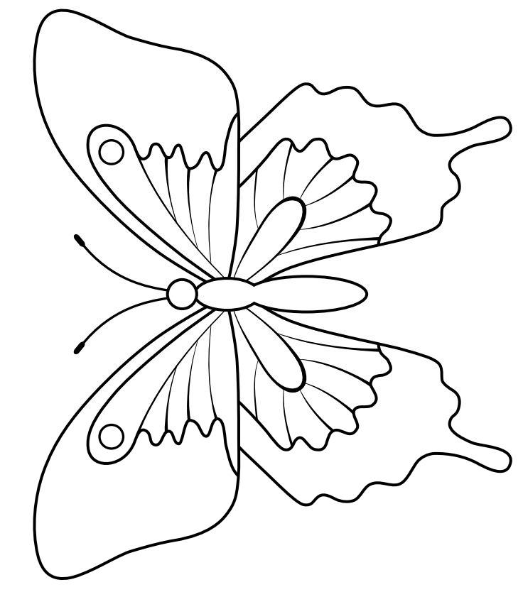 Dibujos De Mariposas Para Colorear Grandes