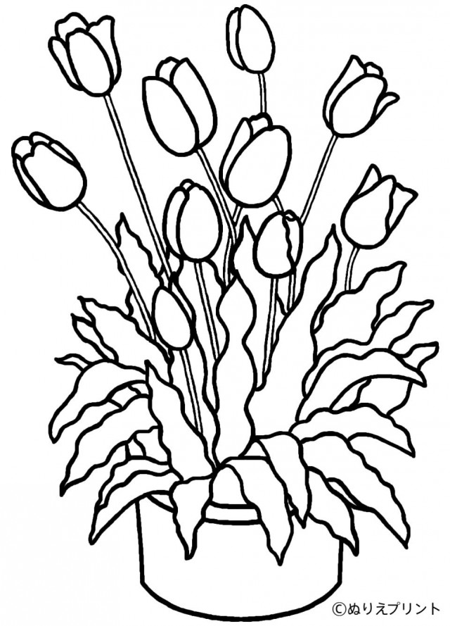 Paul And Barnabas Coloring Pages Sketch Coloring Page