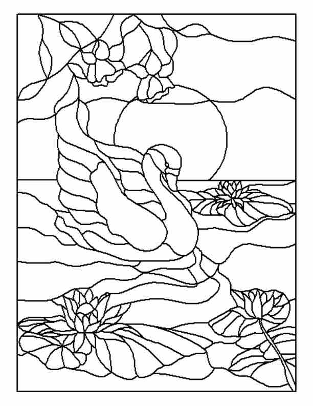 Traceable Flower Patterns Coloring Home