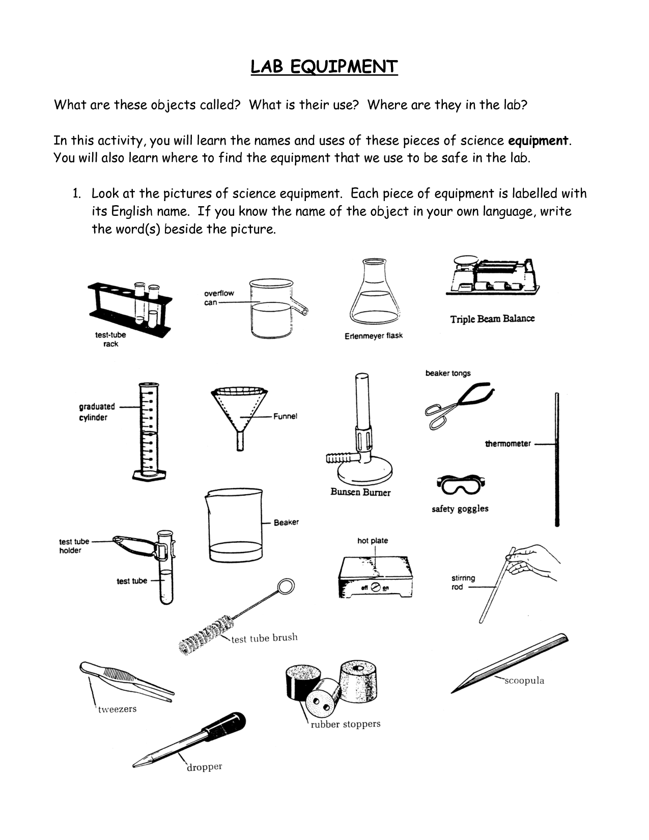 Kitchen Utensils Small Equipment Identification Worksheet