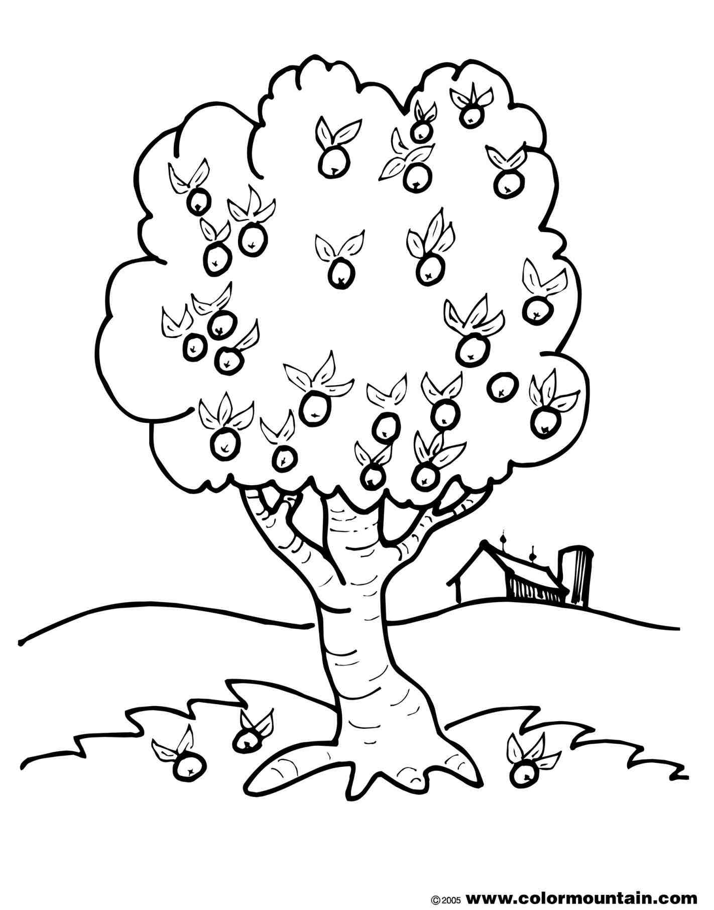 Simple Tree Coloring Page Coloring Home
