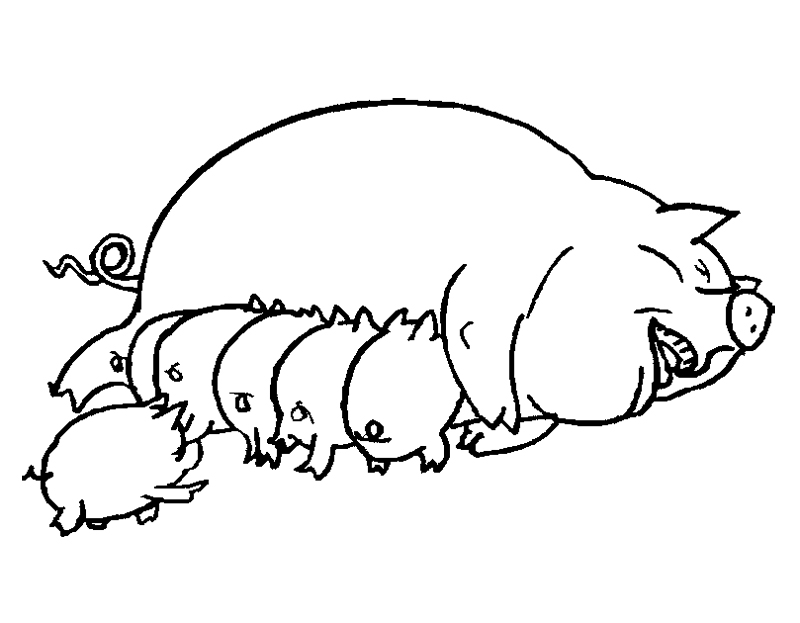 Free coloring pages of pig digestive system