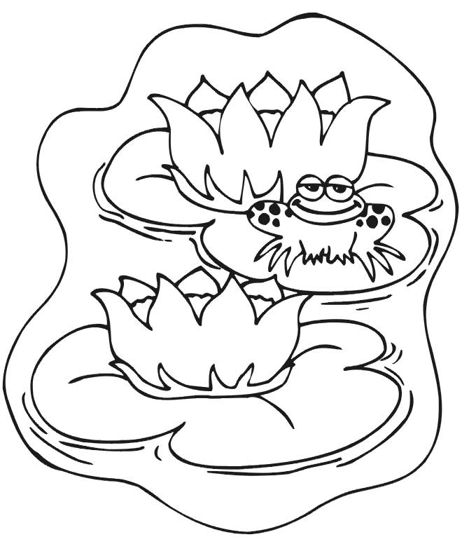 Animals Coloring In The Pond Coloring Pages