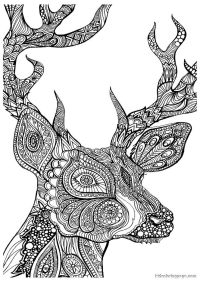 Advanced Coloring Pages Of Animals - Coloring Home