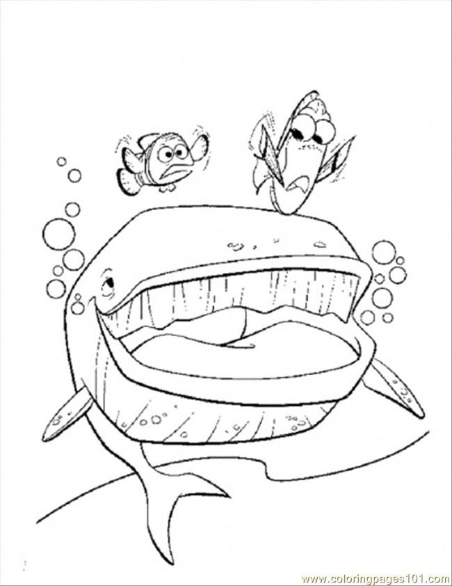 Finding Nemo Shrimp Coloring Page
