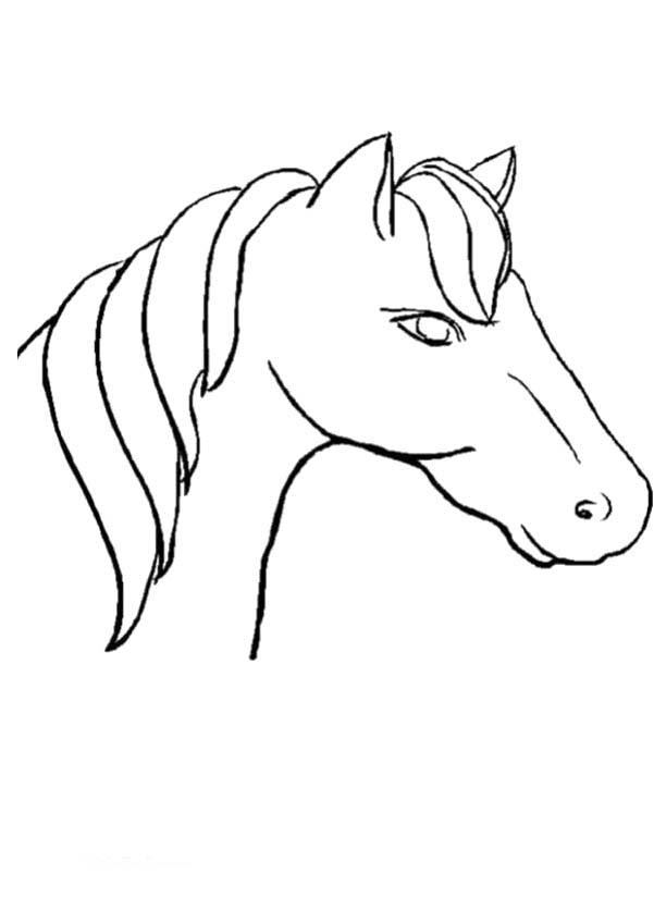 Stick Horse Head Coloring Page Coloring Pages