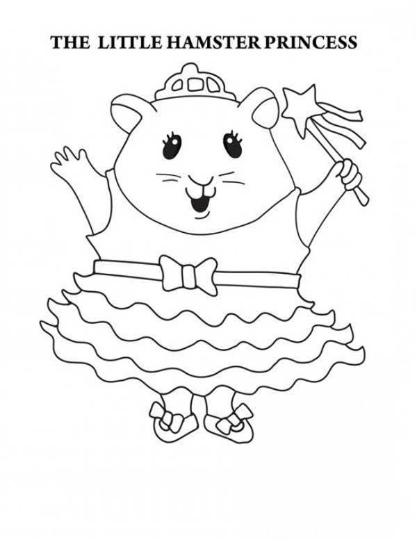 Guinea Pig Coloring Pages The Little Hamster Princess In