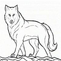 Wolf With Pup Coloring Pages - AZ Coloring Pages