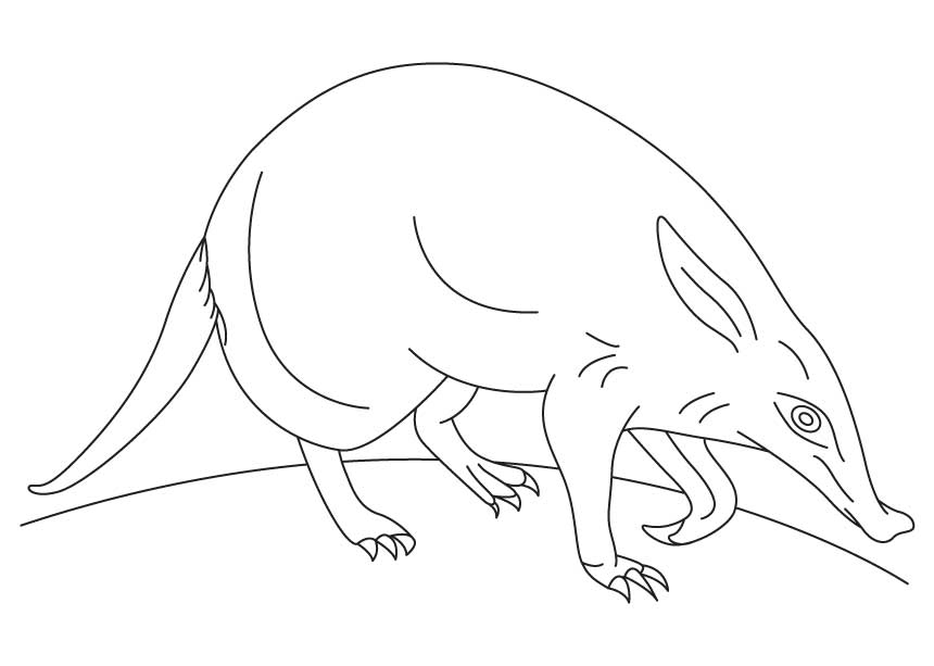 The Ant And Aardvark Pages Coloring Pages