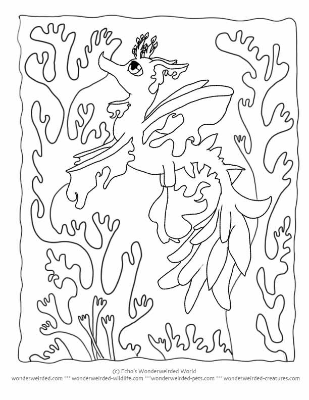 Otter Kelp Forest Coloring Pages