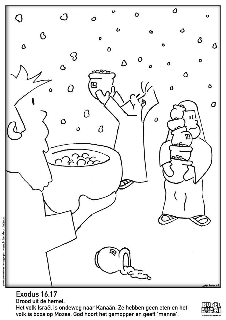 Bible Pages Of Manna And Quail Coloring Pages