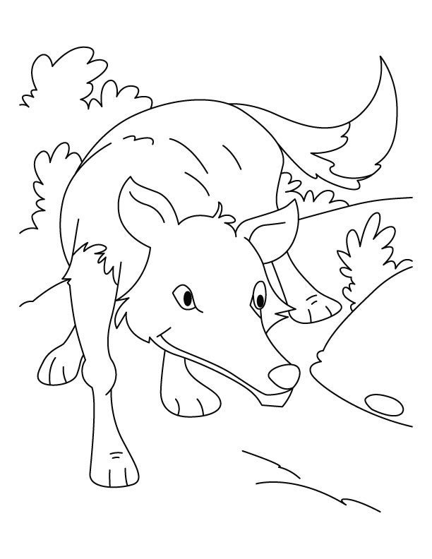 Free peter and the wolf coloring pages