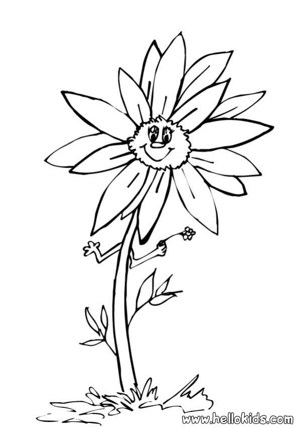 Sunflower Coloring Pictures Coloring Home