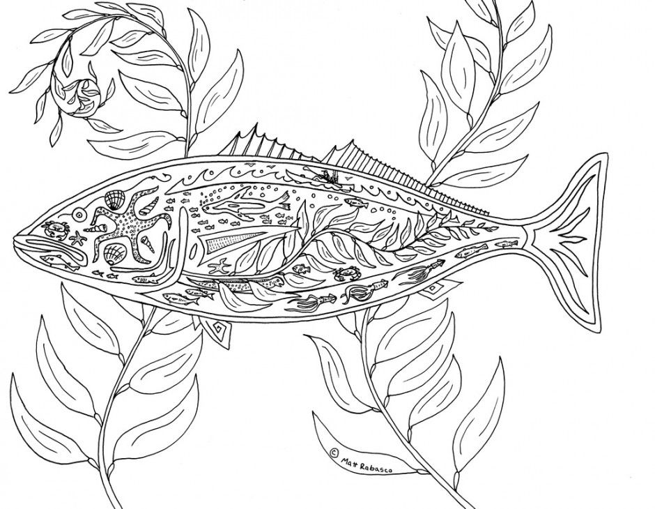 Printable Coloring Pages For Coral Reef Biomes Coloring Pages