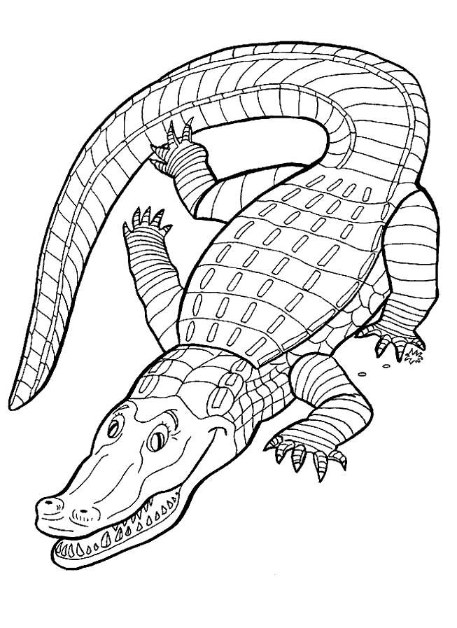 L Lizard Coloring Page
