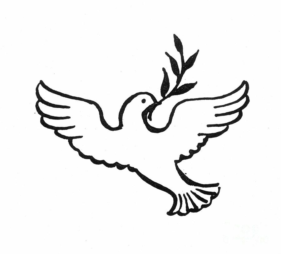 Dove Of Peace Coloring Page