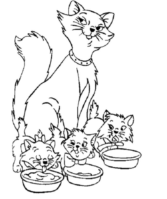 Winged Cats Coloring Pages Family Coloring Pages