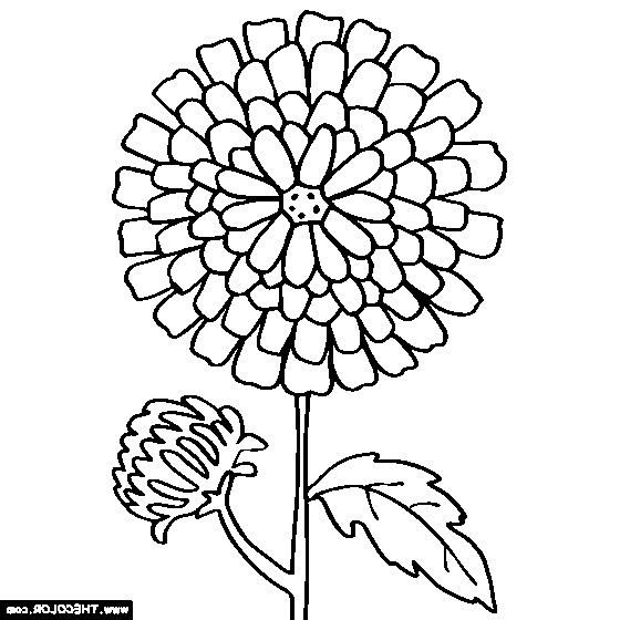 Kevin Henkes Coloring Pages