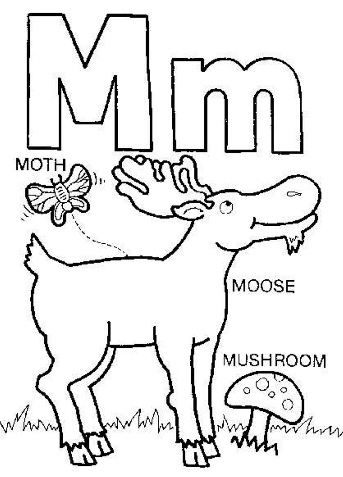 Moose A Muffin Worksheet