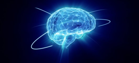 interesting-facts-about-the-human-brain