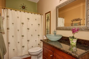 4414 E. Smokehouse Trail Guest Bath