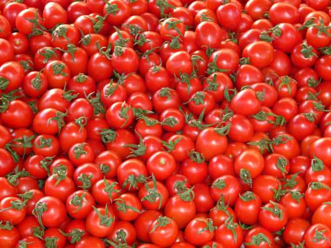 tomatoes-vegetables-red-delicious-68133.jpeg
